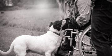 Seguro de dependencia, un salvavidas a tu bienestar